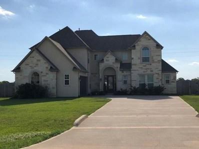 13511 Sunrise Bluff Drive, Hockley, TX 77447 - #: 11321818