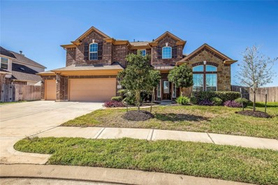 16327 Chandler Point Drive, Hockley, TX 77447 - #: 11891231