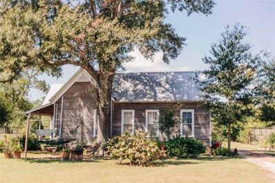 338 Hill Street, Sealy, TX 77474 - #: 12816389