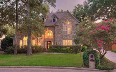 18419 Forest Elms Drive, Spring, TX 77388 - #: 13175027
