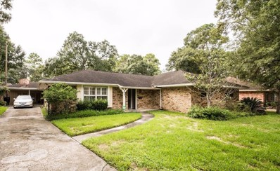 834 Myrtlea Lane, Houston, TX 77079 - #: 13497053