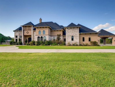 26183 Century Oaks Boulevard, Hockley, TX 77447 - #: 14760879