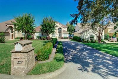 12557 Longmire Lakeview, Conroe, TX 77304 - #: 14806083