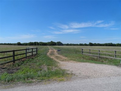 13918-B Battle Rd, Beasley, TX 77417 - #: 15022726
