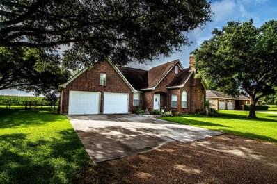 514 Lakeview Drive, Wallis, TX 77485 - #: 15567674