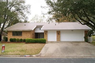 430 Brookhollow Drive, Huntsville, TX 77340 - #: 15991901