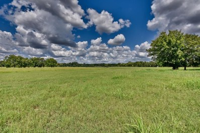 1036 Lot 3 Hwy 237, Round Top, TX 78954 - #: 17717023