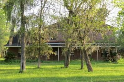 3209 Miller Road, Rosharon, TX 77583 - #: 17726921