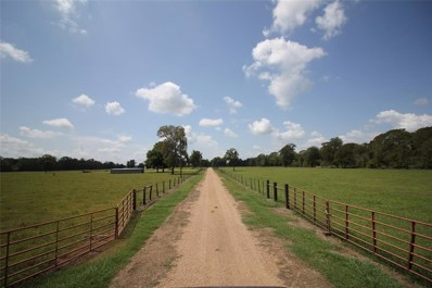 0 Sparks, Boling, TX 77420 - #: 18239000