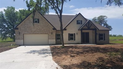 2162 Twin Lakes Boulevard, West Columbia, TX 77486 - #: 19187503