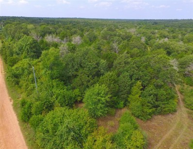 600 Country Way Road, Smithville, TX 78957 - #: 20216017