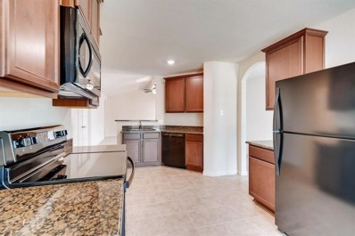 22726 Hollow Amber Drive, Hockley, TX 77447 - #: 20270662