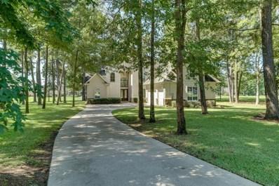 11428 Lake Oak Drive, Montgomery, TX 77356 - #: 20283186