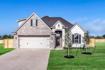 4207 Harding Court, Bryan, TX 77802 - #: 20651486