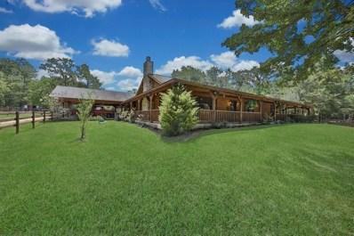 42500 N Mill Drive, Magnolia, TX 77354 - #: 20806501