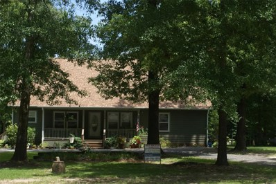 159 W Semaphore Court, Hemphill, TX 75948 - #: 2111211