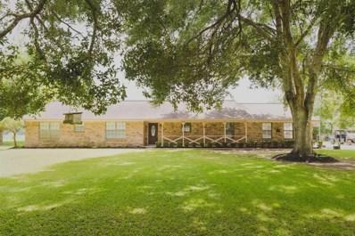 5813 County Road 244, Brazoria, TX 77422 - #: 21277902