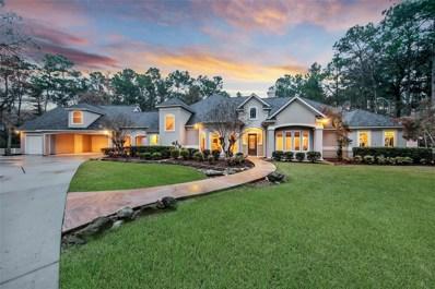 17102 Indigo Hills Drive, Magnolia, TX 77355 - #: 21471681