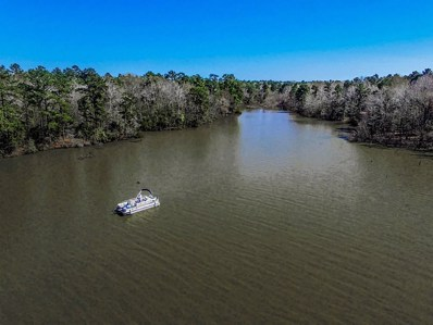 1 Hidden Cove, Point Blank, TX 77364 - #: 21888184