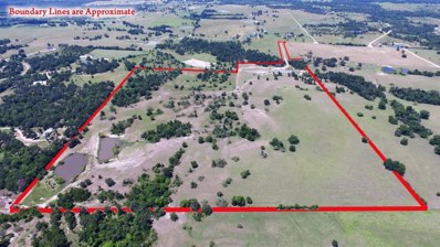 Tbd County Road 185, Anderson, TX 77830 - #: 22417754