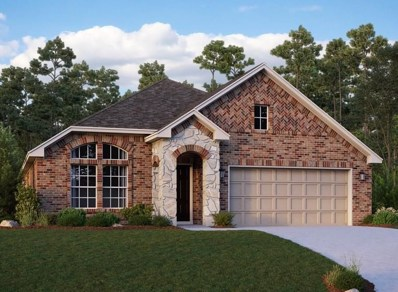 17342 Chester Valley Trail, Hockley, TX 77447 - #: 23085345