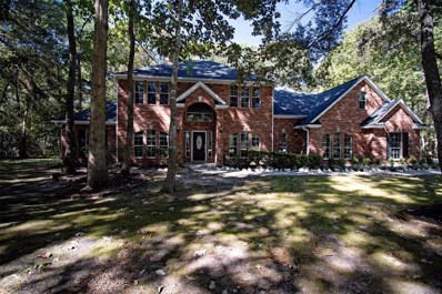 23969 Majestic Forest, New Caney, TX 77357 - #: 24521304