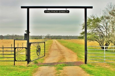 6541 Eagle Nest Acres Drive, Wallis, TX 77485 - #: 24648944