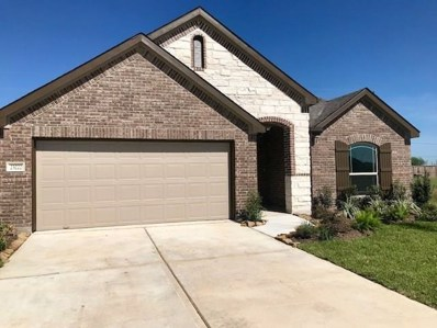 23222 Twilight Oaks Ct, Katy, TX 77493 - #: 24834636