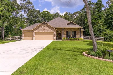 9162 Silver Back Trail, Conroe, TX 77303 - #: 25164043