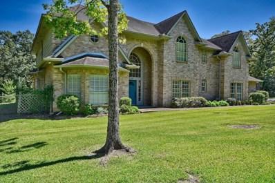 3810 N Briarwood, Brenham, TX 77833 - #: 25406384