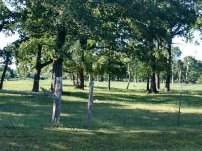 Mitchamore, Hempstead, TX 77445 - #: 26771683