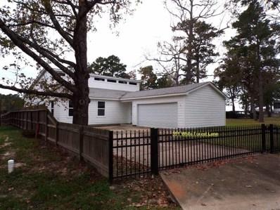 351 SE White Forest Lane, Livingston, TX 77351 - #: 26914200
