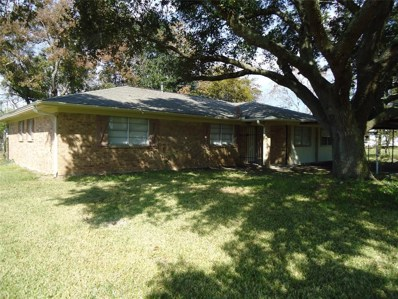 8106 Leroy Road, Richmond, TX 77469 - #: 27762162
