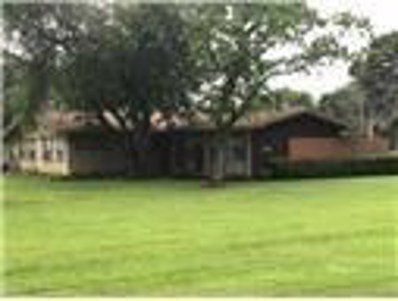 234 Primrose Lane Street, Jones Creek, TX 77541 - #: 28327817