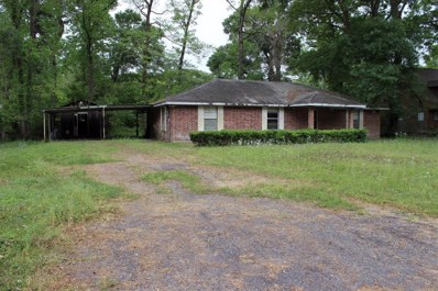 43 County Road 4322, Dayton, TX 77535 - #: 29683623