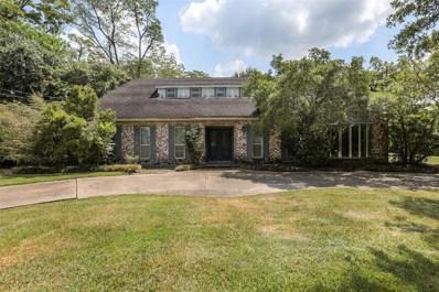 816 Bunker Hill Road, Houston, TX 77024 - #: 30030949