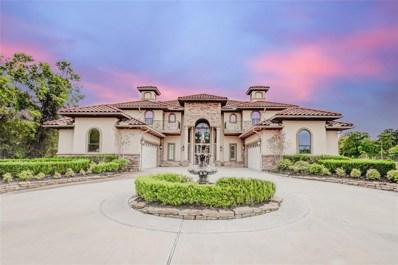 11503 Renaissance Drive, Montgomery, TX 77356 - #: 30660864