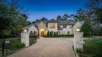 15 Bridle Oak Court, The Woodlands, TX 77380 - #: 31110392