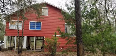26060 Lakeview Drive, Hockley, TX 77447 - #: 31261104