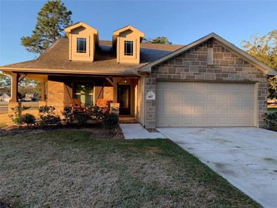 447 S Amherst Drive, West Columbia, TX 77486 - #: 3128987
