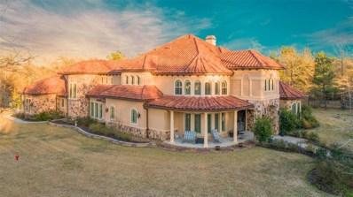 23580 High Meadow Estates Dr, Montgomery, TX 77316 - #: 33566997