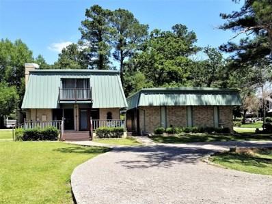 111 Live Oak, Livingston, TX 77351 - #: 35290601