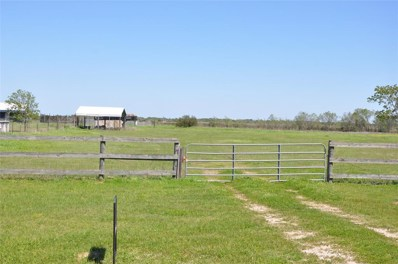 0 Settlers Court, Sealy, TX 77474 - #: 38038961