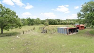 24031 Richards Road, Hempstead, TX 77445 - #: 38376727