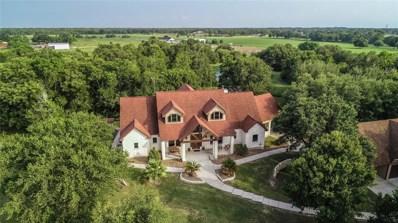 18619 Cedar Creek Court, Needville, TX 77461 - #: 38479651