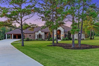 104 Fish Creek, Montgomery, TX 77316 - #: 38680032