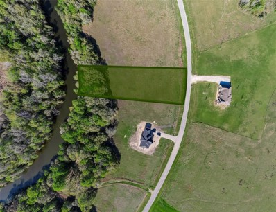 Lot 4 River Hollow Way, Blessing, TX 77419 - #: 38802529