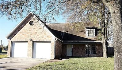 6803 Drewlaine Fields Lane, Katy, TX 77449 - #: 39360371
