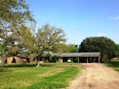 314 W Lane 2, Anahuac, TX 77514 - #: 39373464