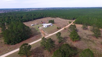 124 Timber Road 14, Woodville, TX 75979 - #: 39930689